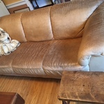 early doll & distressed sofa