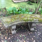 beautiful cement bench