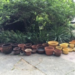 terracota and Bauer pots