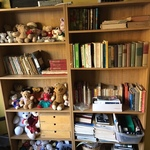 books and stuffed toys
